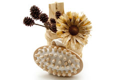 Dry flowers and massage brush. On white background royalty free stock photos