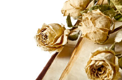 Dry flowers and old book Stock Photos