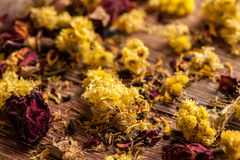 Dry flowers petals Stock Photography