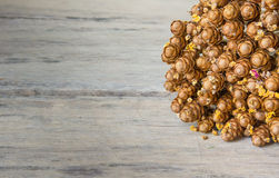 Dry Flowers. Put on the right side wooden background. Vintage style Stock Photo