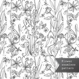 Dry flowers seamless pattern Royalty Free Stock Photos