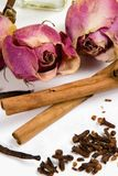 Dry flowers and spices. Royalty Free Stock Photos