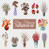 Dry Flowers Transparent Set. Set of dry flowers bouquets in vases of various shapes and sizes for decoration on transparent background flat vector illustration Royalty Free Stock Photos