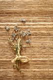 Dry flowers on wood background Royalty Free Stock Photo