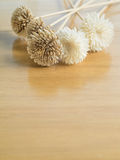 Dry flowers on the wood table. Royalty Free Stock Images