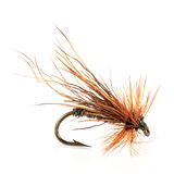 Dry Fly Royalty Free Stock Images