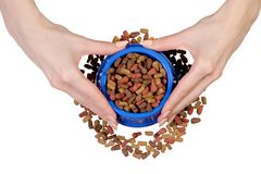 Dry food in a bowl for dogs and cats in hands. On a white background isolation, top view Royalty Free Stock Photography