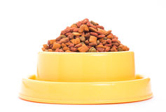 Dry food cat Royalty Free Stock Image