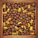 Dry food for dogs Stock Image