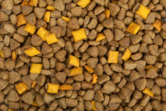 Dry food for dogs Stock Images