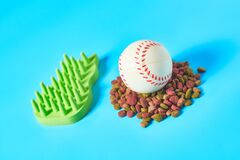 Dry food for pet and baseball ball near comb on blue background