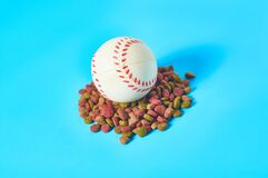 Dry food for pet and baseball ball on blue background