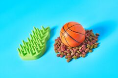 Dry food for pet and basketball ball near comb on blue background