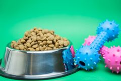 Dry food and pet supplies for dog or cat concept stock image