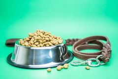 Dry food and pet supplies for dog or cat concept stock photos