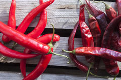 Dry and fresh chili. On a stone plate Royalty Free Stock Image