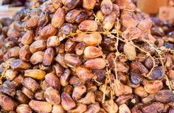 Dry fruit date on the market in Morocco Royalty Free Stock Image