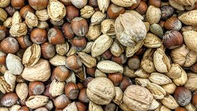 Dry fruit mix in loose. Can be used as a background or wallpaper and for other possibility or to modify to your taste Stock Photography