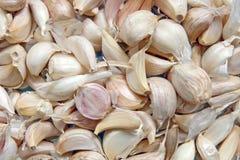 Dry Garlic Stock Image