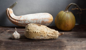 Dry garlic, pumpkin, zucchini. Still life with dry garlic, pumpkin, zucchini Stock Photo