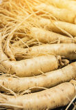 Dry Ginseng Roots with warm light effect. Royalty Free Stock Images