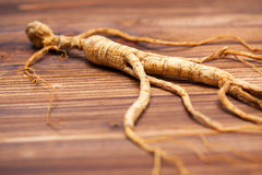 Dry ginseng on wood background Royalty Free Stock Photography