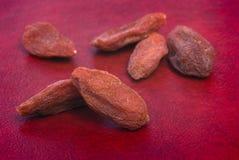 Dry goji berries (Lycium barbarum) on red background Stock Images