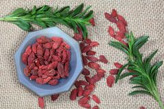 Dry goji berries Royalty Free Stock Photography
