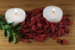 Dry goji berries Stock Photography