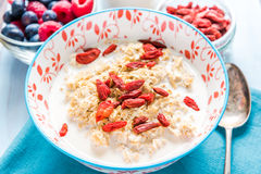 Dry goji fruit berry with homemade porridge Royalty Free Stock Photo