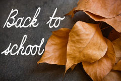 Dry golden autumn leaves on dark concrete stone background, border, fall,school time. Stock Photography