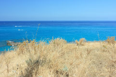 Dry grass by blue sea Stock Photography