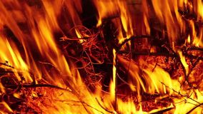 Dry grass burns that causes fire stock video