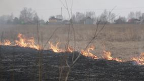 Dry grass burns, near houses and a road. A strong wind accelerates the fire stock footage
