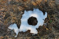 Dry grass covered with white melting snow, circle shape, natural background. Top view stock image
