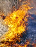 Fire in grass Royalty Free Stock Image