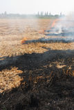 The dry grass in the field burns inflated Stock Photos