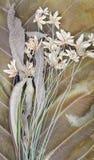 Dry Grass flower Stock Photo