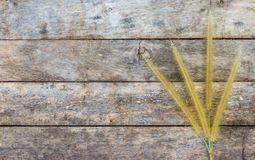 Dry grass flower on wooden Stock Photos
