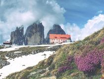 Dry grass and heather bushes at mountain trekking path. Snowy mountains in heavy clouds royalty free stock image