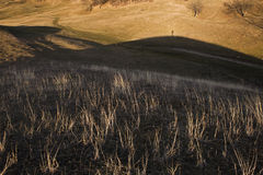 Dry grass and hill shadow Royalty Free Stock Photos