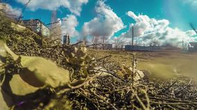 Dry grass and leaves dirty ground Russian blue sky stock footage