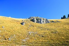 Dry grass on mountain meadow, big rock and blue sky. Dry grass on mountain meadow, Vlasic, Bosnia and Herzegovina stock photography