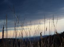 Dry grass. Mountains and clouds behind the dried grass Royalty Free Stock Photo