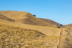 Parched Californian Countryside. Dry Grass on Rolling Californian Countryside, with a Blue Sky Overhead royalty free stock photography