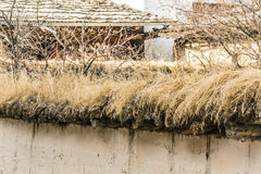 Dry grass roof in old house in china Stock Image