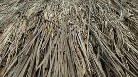Dry grass roof. From thai house Stock Photography