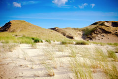 Dry Grass And Sandy Dunes Royalty Free Stock Image