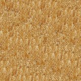 Dry Grass Seamless Pattern Royalty Free Stock Photography