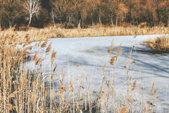 Dry grass on the shore of a snow-covered river, landscape, in re Stock Photos